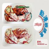Sword Art Online Asuna Iron Glasses Boxes